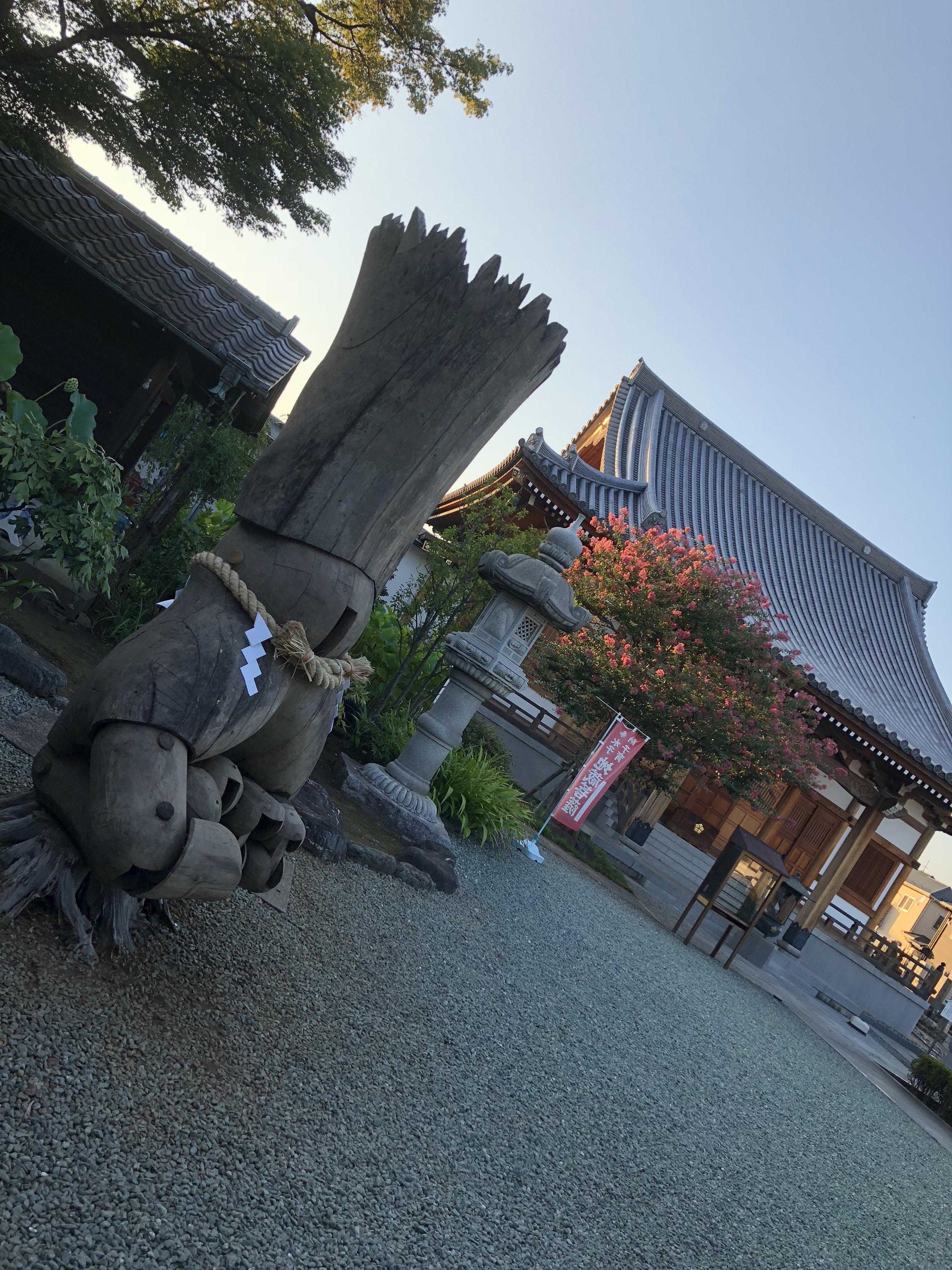 蓮光寺にパワーが集結!!
